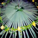 Hochzeitsschirm